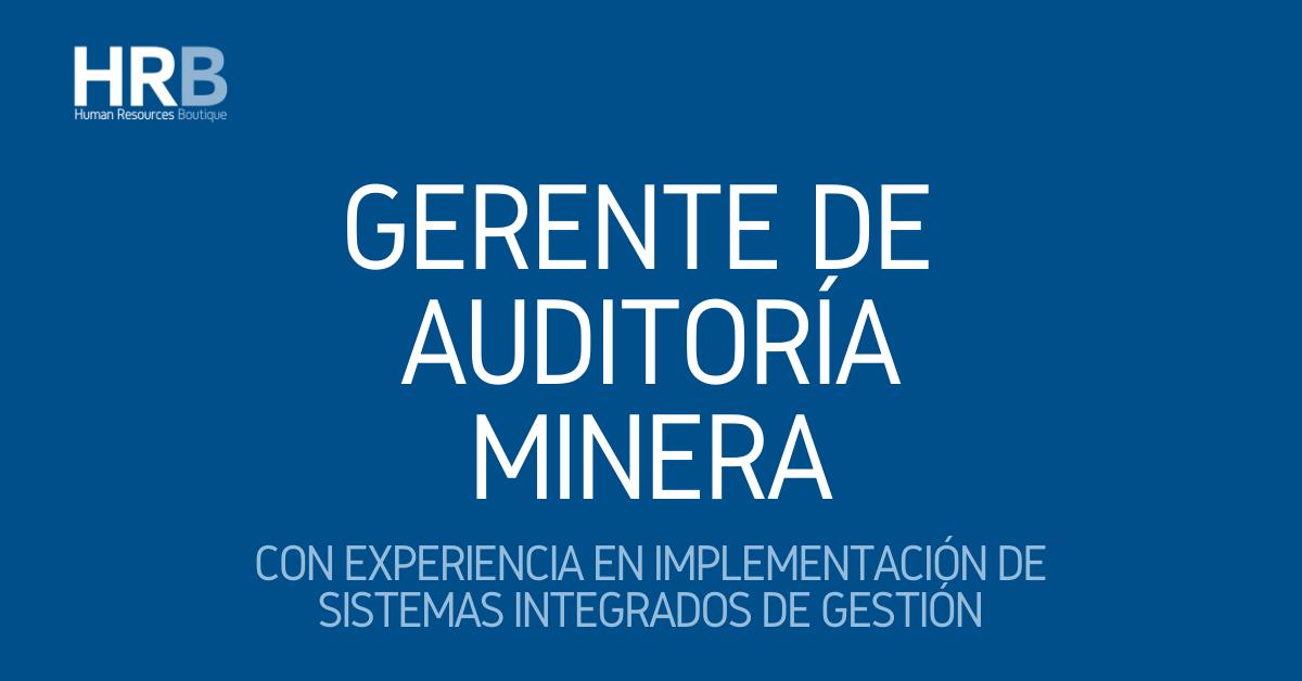 GERENTE DE AUDITORÍA MINERA